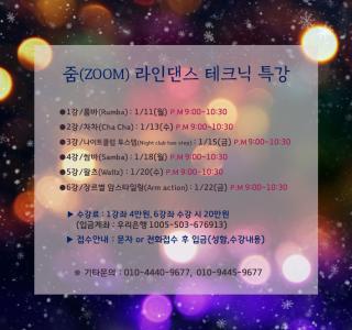 줌(zoom) 라인댄스 테크닉특강~!